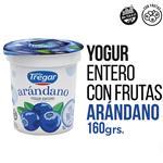 Yogur Entero TREGAR Arándanos 160 Gr