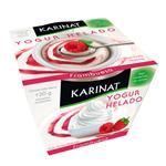 Yogurt Helado Frambuesa Karinat Pot 120 Grm