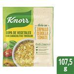 Sopa De Vegetales KNORR Con Caracolitos 107.5 G